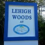 LeHigh Woods Logo 2 2014
